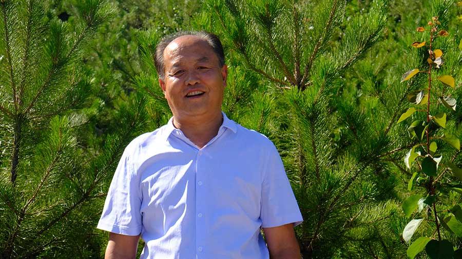 Zhang Junping seperti dilansir China Daily, berdiri di antara pohon pinus di Taman Hutan Gunung Yuquan pada 19 Juli 2020   Foto oleh Yang Xiaoyu / chinadaily.com.cn