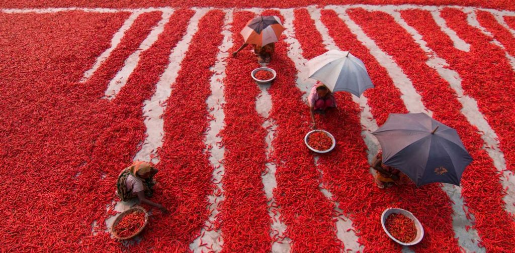 Spice of Life. Azim Khan Ronnie, Bangladesh. Commended Entry untuk Good Food For All Photography Competition